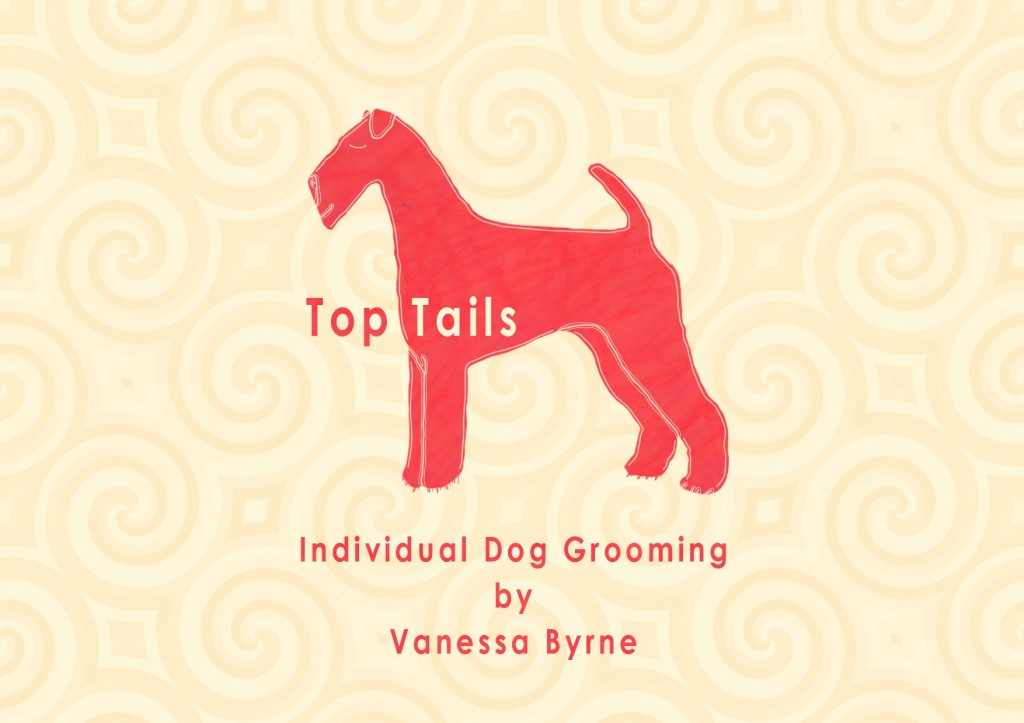 Individual Dog Grooming by Vanessa Byrne